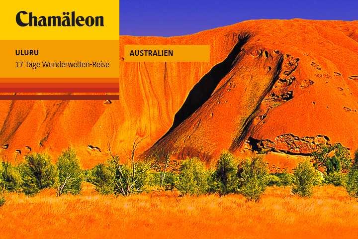 Uluru Niedermayer Reisen Reiseburo Und Busunternehmen